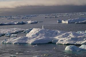 ice2012 012.jpg