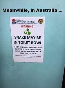 snaketoilet.jpg