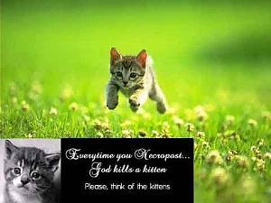 necropost-kitten.jpg
