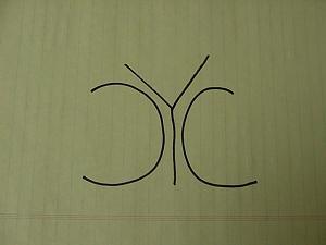 CYC.JPG