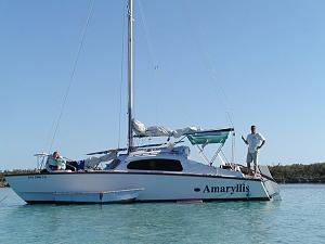 Click image for larger version  Name:amaryllis.jpg Views:35 Size:53.0 KB ID:678