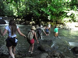 Trail_to_Victoria_Falls.JPG