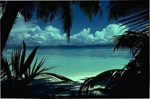 Click image for larger version  Name:chagos2.jpg Views:26 Size:43.5 KB ID:876