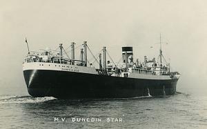 dunedin_star.jpg