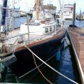 steel sloop 37 03